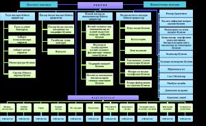 struktura 300x184 - Institute structure