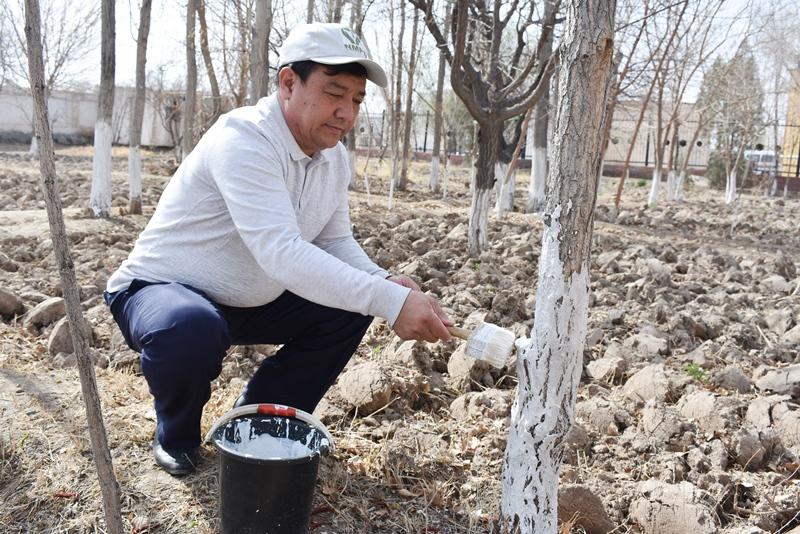 DSC 0672 - Жаслар басламасы тийкарында экологиялық акция өткерилмекте