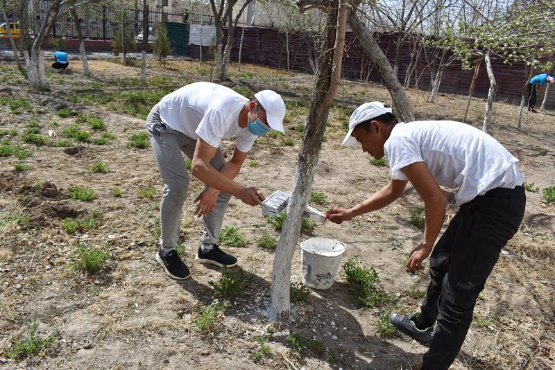 DSC 0715 - Экологиялық акцияда белсендилик көрсеткен жаслар хошаметленди